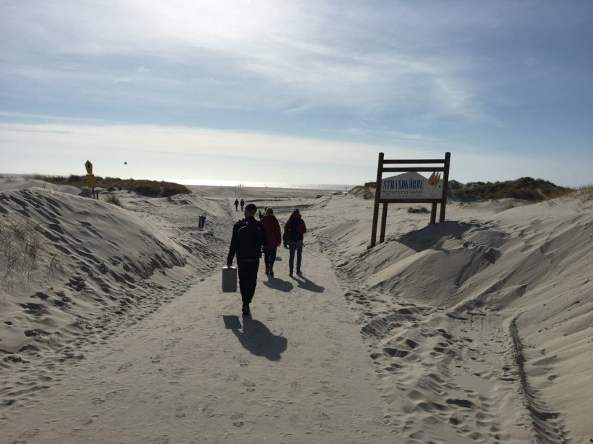 Bergwaldprojekt Amrum - Way to Beach | GreenMe Berlin on the road