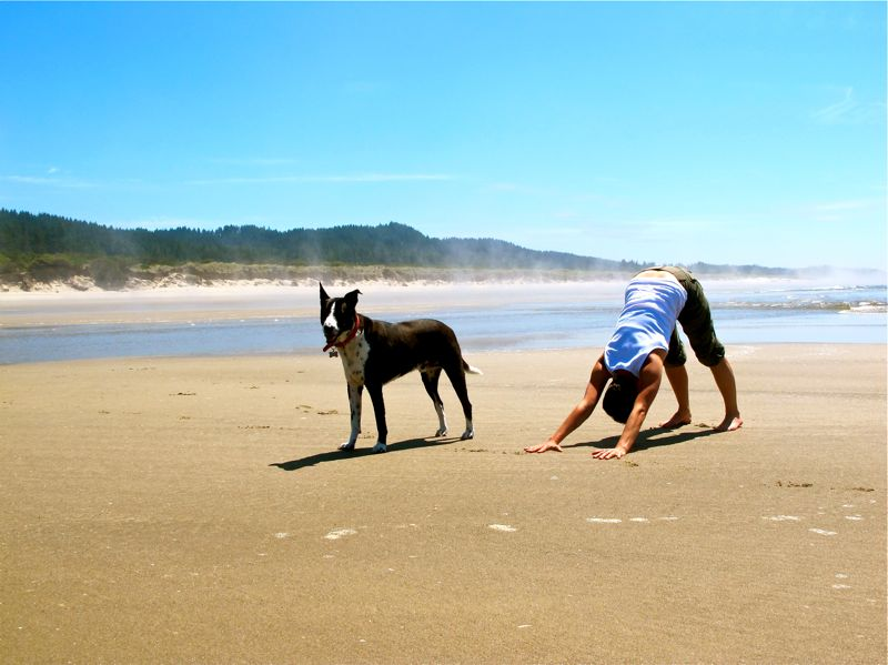 The Reason Downward-Facing Dog In Yoga Is So Good For You