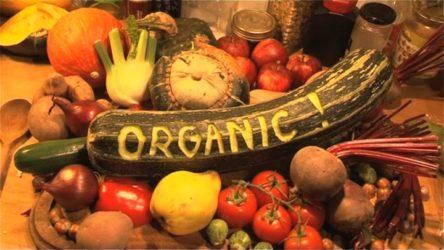 An Organic Consumer's Responsibility