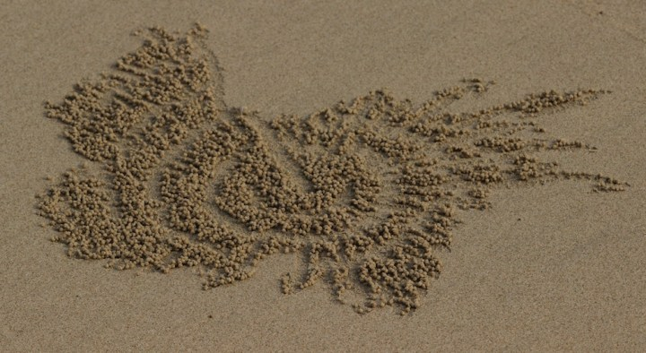 Artwork on sand created by Crabs in the Andamans