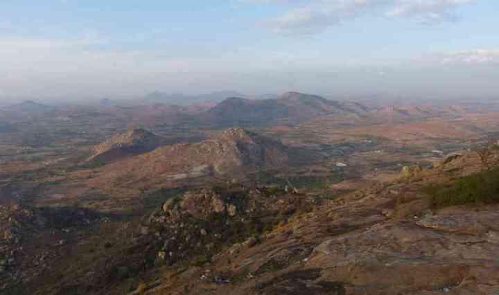 Horsley Hills - landscape
