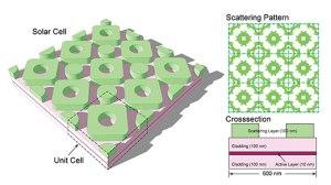 evolution-inspires-more-efficient-solar-cell-design-main