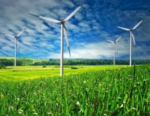 Wind Power Option