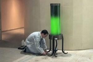 algae-streetlight-537x359