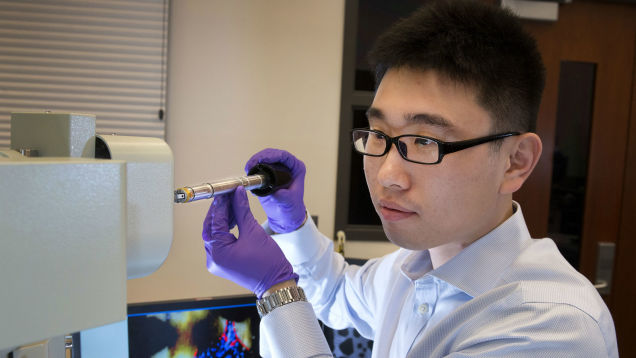 Investigating lithium-ion battery degradation at Brookhaven National Laboratory