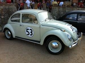 beetle-139307_1280