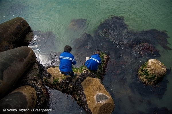 Greenpeace radiation monitoring team conduct seaweed testing along the Fukushima coastline.