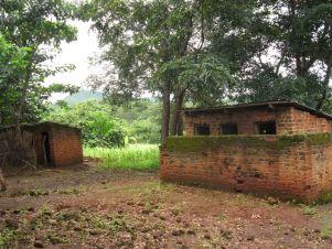 Sonjea school