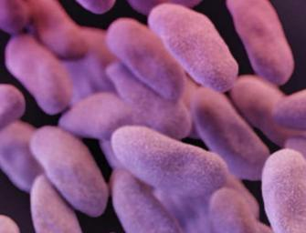 Drug Resistant Microbes Under Siege