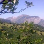 Sentiero 1 - Il Monte Catria