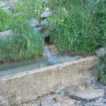 Sentiero 6 - Fonte S. Giglio