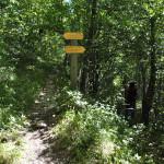 Sentiero 4 - A Zig-Zag