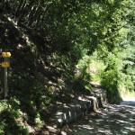 Sentiero 4 - Arrivo sulla strada dell'Eremo