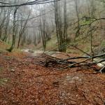 Sentiero 10 - Risalendo la Valle San Pietro