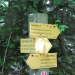 Sentiero 31 - Incrocio Sentiero 1