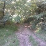 Sentiero 17 - Discesa dalla Fida
