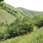 Sentiero 237 - Alta valle San Pietro