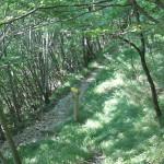 Sentiero 233 - Incrocio a Serra Piana