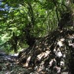 Sentiero 238 - Valle dell'Orto della Cicuta
