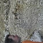 Sentiero 238 - Bellissime arenarie sedimentate nella Valle dell'Orto della Cicuta