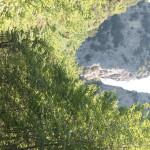 Sentiero 238 - Lungo il Torrente delle Gorghe