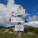 Pollino trek - Passo di Malevento
