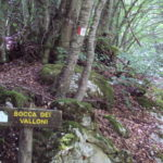 Bocca dei Valloni