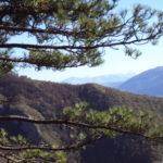 Sentiero 293 - I Monti Sibillini