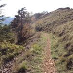 Sentiero 293 - Verso il punto panoramico