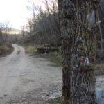 Sentiero 290 - Vecchi segnavia