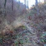 Sentiero 279 - Il sentiero poco visibile