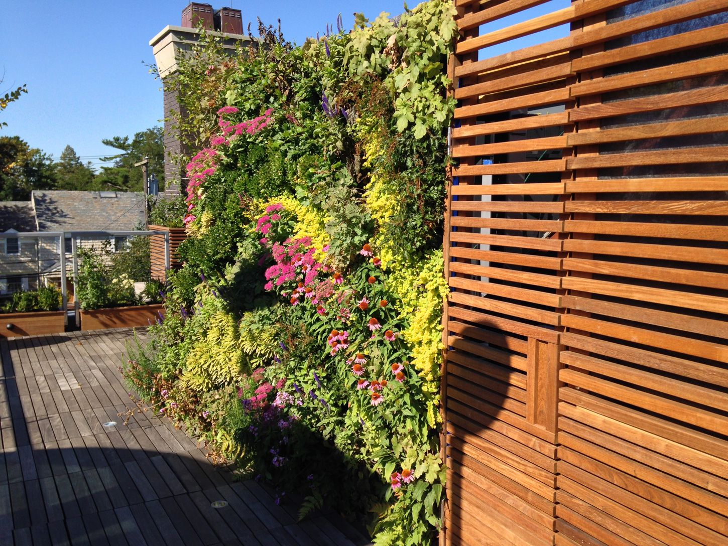 Private Roof Terrace And Greenwall Landscape Design Lawrence NY