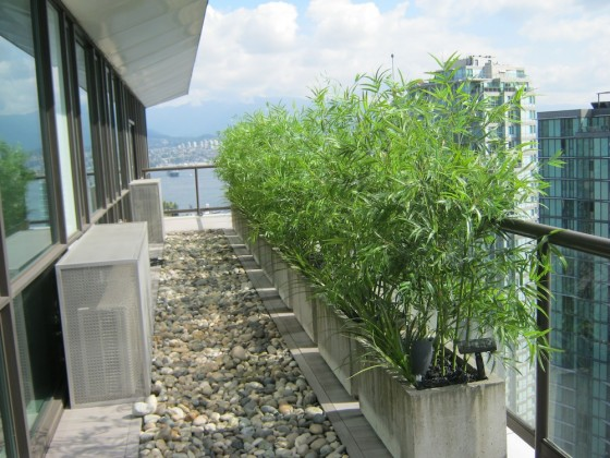greenscape design decor