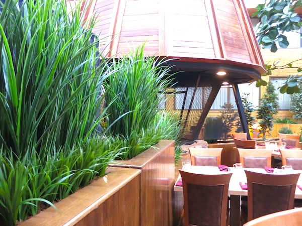 Tips For Creating Privacy In Your Patio Greenscape