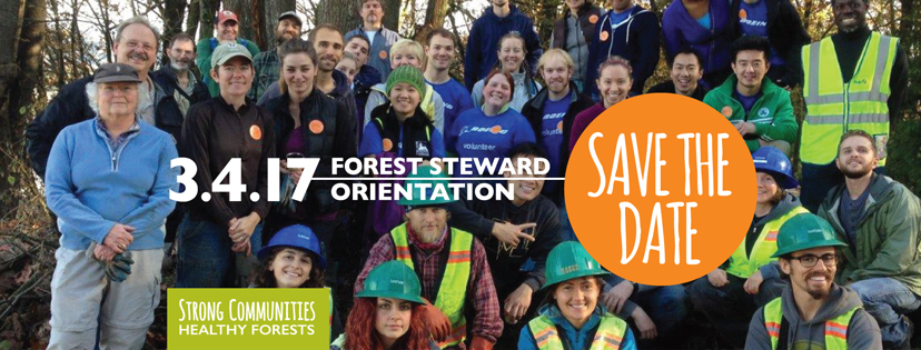 Call For New Forest Stewards