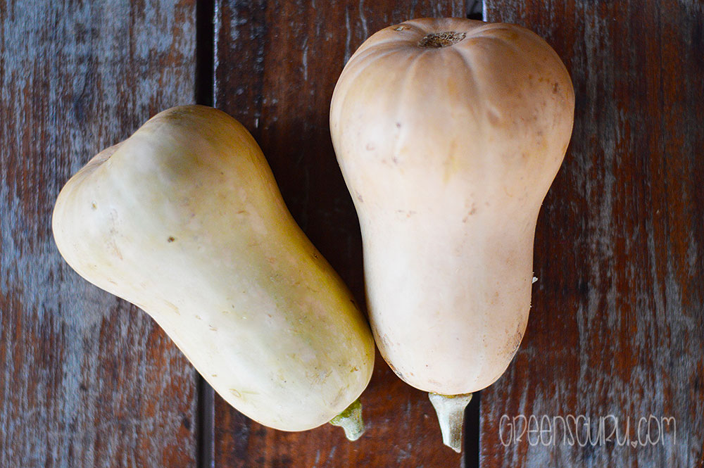 Best Conditions For Growing Butternut Squash For The Beginner Greensguru