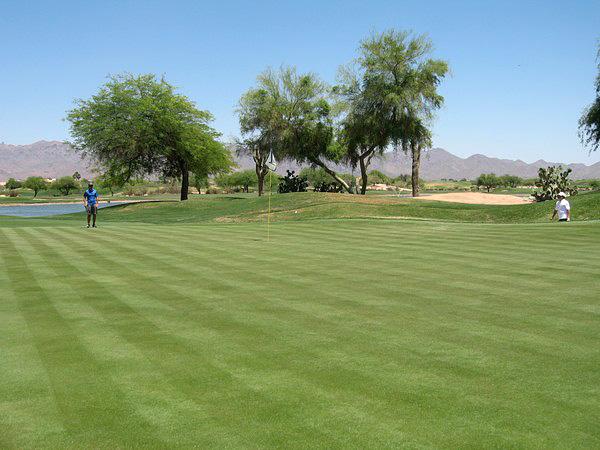 TPC Scottsdale (STADIUM) Scottsdale Arizona Hole 12 Par 3