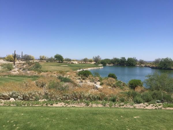 Verrado Golf Club (FOUNDERS) Buckeye Arizona