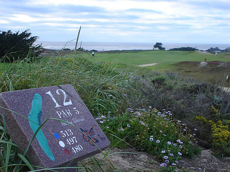 Pacific Grove Golf Links Pacific Grove California. Hole 12
