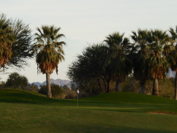 Tahquitz Creek (RESORT) Palm Springs California Hole 14 Approach