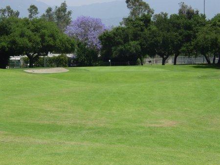 Santa Anita Golf Course Arcadia California Hole 8 Par 3