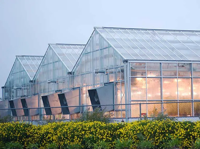green energy solutions for agriculture and horticulture