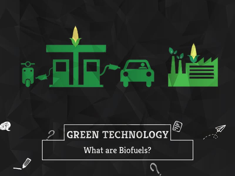 What are Biofuels by GreenSutra