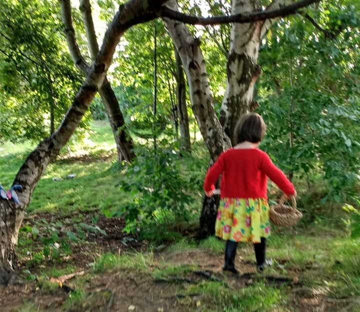 young girl foraging in the woods