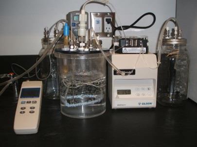 Bioreactor for Syngas Fermentation