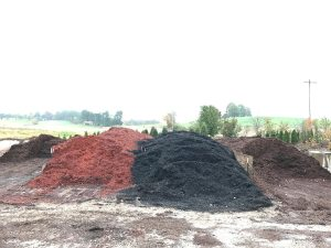 image of colored mulch