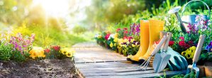 Image of landscaping tools and rubber boots