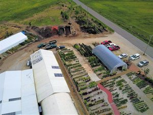 drone image of landscaping location