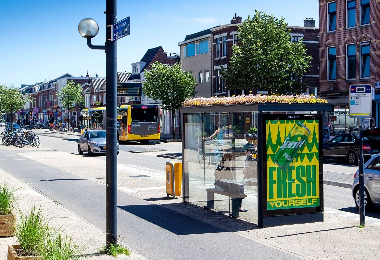 Zelená střecha na zastávkách, blízká budoucnost