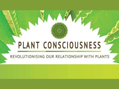 Interconnected at Plant Consciousness 2015, London
